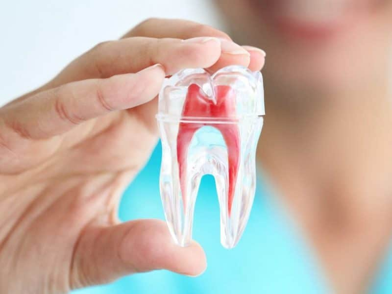 Eryaman Diş Hastanesi Ve Geniş Çaplı Hizmetler